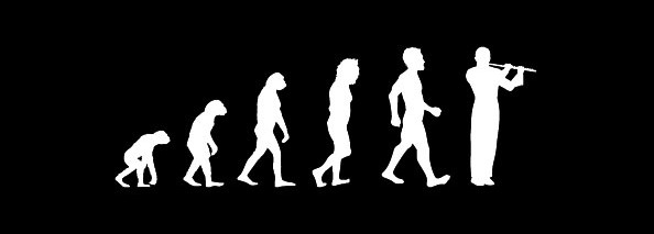 evolution flöte